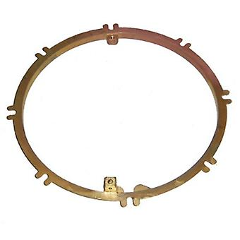 Pentair 79211600 AmerLite Brass Mounting Ring for Concrete