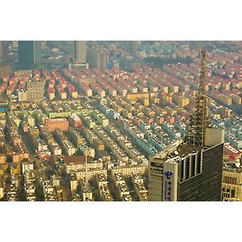 Aerial view of new Pudong district housing Shanghai China Poster Print by Panoramic Images (36 x 24)