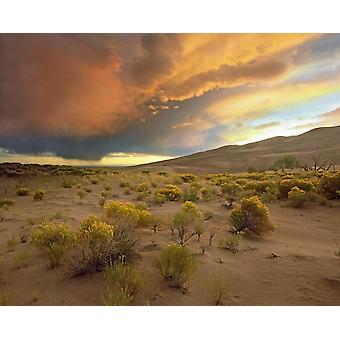 Storm clouds over Great Sand Dunes National Monument Colorado Poster Print by Tim Fitzharris