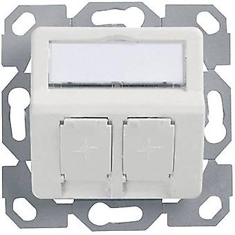 Network outlet Flush mount Insert with main panel Unequipped 2 p