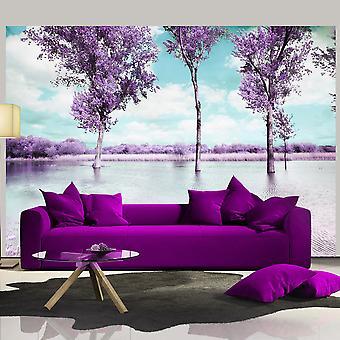 Wallpaper - Heather landscape