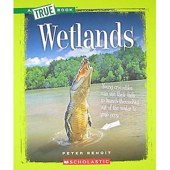 Wetlands by Peter Benoit - 9780531281000 Book