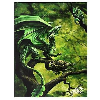 Age Of Dragons 19x25cm Forest Dragon Canvas