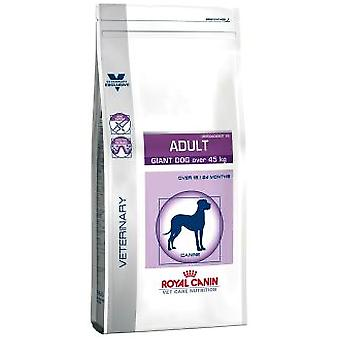 Royal Canin Adult Giant Dog Veterinary (Honden , Voeding , Dierenvoeding , Droogvoer)