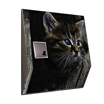 Radio Gong cute cat as a wireless doorbell with a House noble beam V2A