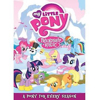 My Little Pony L'amicizia è magica: Importare un Pony per Ev [DVD] Stati Uniti d'America