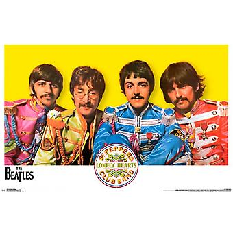 The Beatles - Sgt Peppers affiche Poster Print