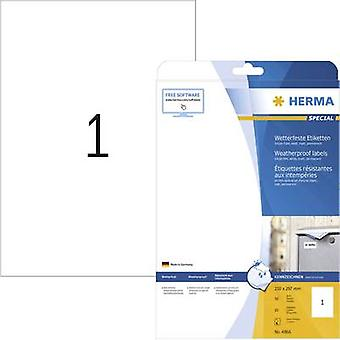 Herma 4866 Labels (A4) 210 x 297 mm Film White