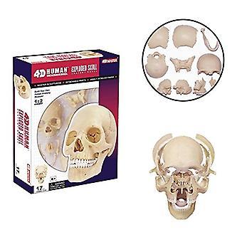 4D Master 26086 menschlichen Anatomie explodierte Schädel Modell 3D Puzzle, einfarbig