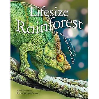 LifeSize Rainforest (marché principal éd.) par Anita Ganeri - Stuart Jackso