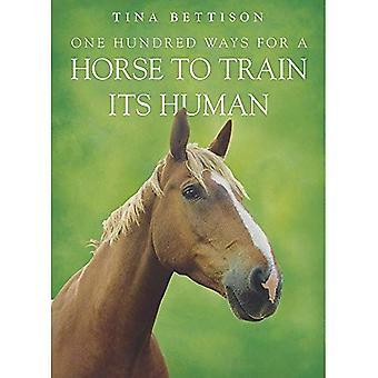 En hundra sätt för en häst att träna sin mänskliga