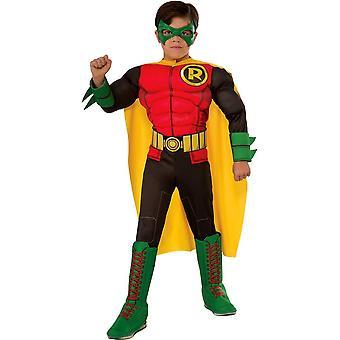Robin 3D Costume For Children