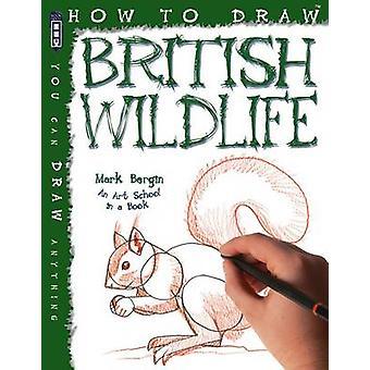 How to Draw British Wildlife by Mark Bergin