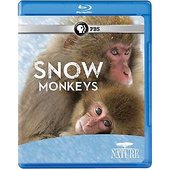 Nature: Snow Monkeys [BLU-RAY] USA import