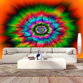 Behang - caleidoscoop van kleuren