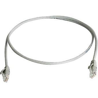 Telegärtner RJ45 Networks Cable CAT 6 U/UTP 5 m Grey Flame-retardant, Halogen-free