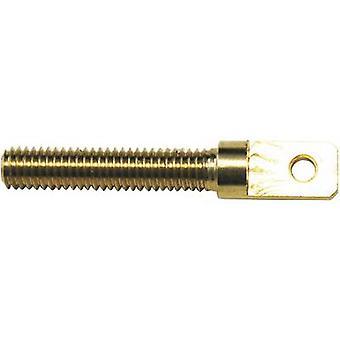 Modelcraft 11589/RM-30 Brass Eye bolt External thread M3 23 mm 4 pc(s)