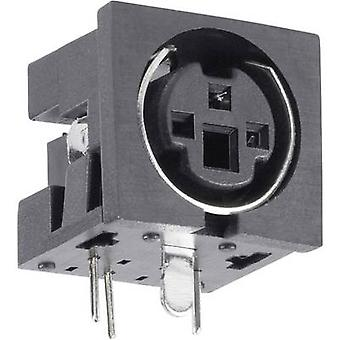 BKL Electronic 0204047 Mini DIN connector Socket, horizontal mount Number of pins: 4 Black 1 pc(s)