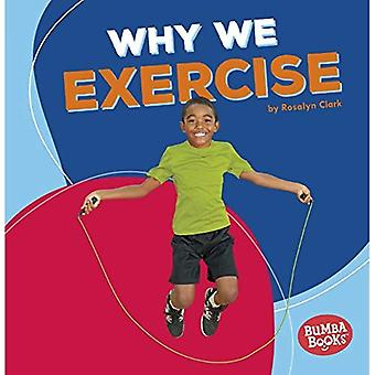 Why We Exercise (Bumba Books Health Matters)