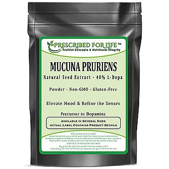 Mucuna Pruriens - Natural Seed Extract - 40% L-Dopa Powder