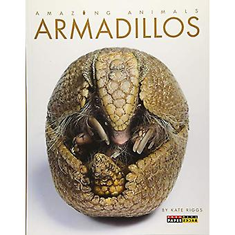 Armadillos by Kate Riggs - 9781628324938 Book