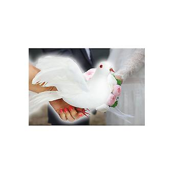 Party favors  Wedding dove decoration