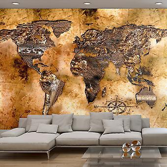 Behang - opalen continenten