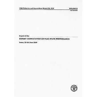 Verslag van de deskundige raadpleging over de prestaties van de vlaggenstaat: Rome, 23-26 juni 2009