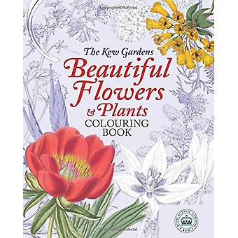 The Kew Gardens Colouring Book - 9781784287542 Book