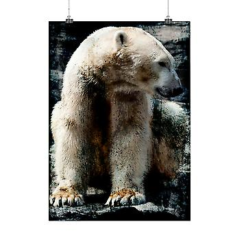 Matte or Glossy Poster with Polar Bear Wild Animal White Furry | Wellcoda | *q117