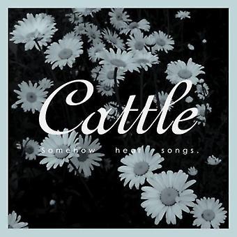 Kvæg - eller anden måde høre sange [CD] USA import