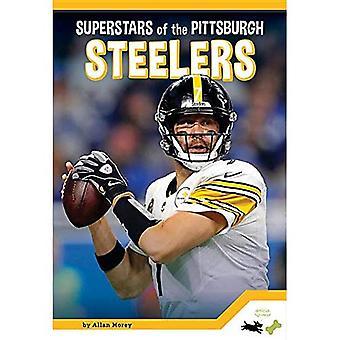 Pittsburgh Steelers (Pro Sports Superstarsnfl)