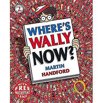 Waar is Wally nu? (Wheres Wally Mini-editie)