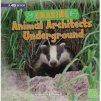Amazing Animal Architects Underground: A 4D Book (Amazing Animal Architects)
