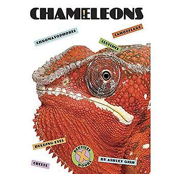 Kameleons (X-boeken: reptielen)