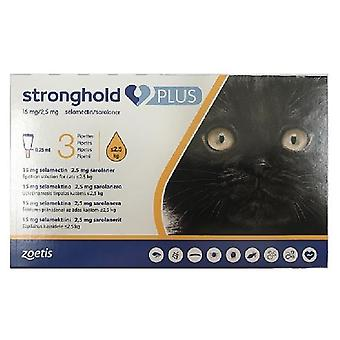Stronghold Plus for Small Cats less than 2.5 kg - 3 pack