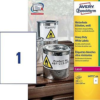 Avery-Zweckform L4775-100 Labels (A4) 210 x 297 mm Polyester film White 100 pc(s) Permanent All-purpose labels, Weatherp