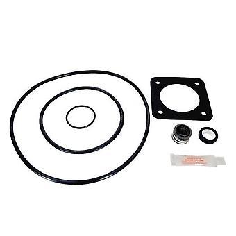Aladdin GO-KIT54 Pump Repair Kit for Sta Rite Duraglass, Maxiglass, P2R, P2RA