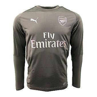 2018-2019 Arsenal Puma Training Sweat Top (Eisernes Tor)