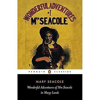 Wspaniałe przygody Pani Seacole w wielu krajach (Penguin Classics XX wieku)