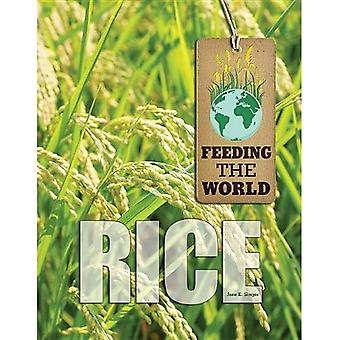 Ris (utfodring världen)