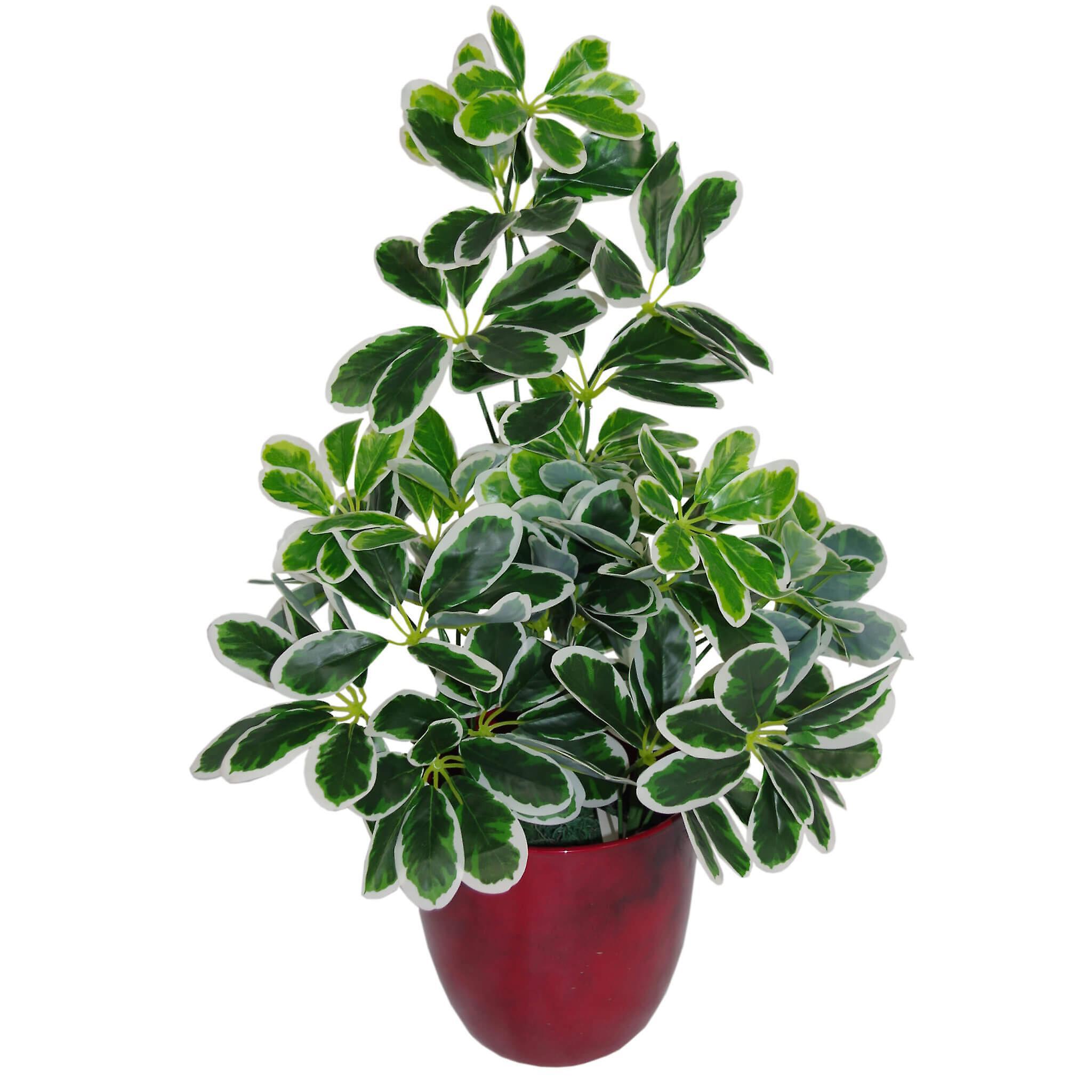 55cm Variegated Artificial Schefflera Arboricola Plant