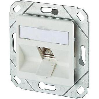 Network outlet Flush mount Insert with main panel CAT 6A 1 port Metz Connect Pure white