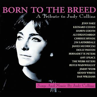 Born to the Breed - a Tribute to Judy Co - Born to the Breed-a Tribute to Judy Co [CD] USA import