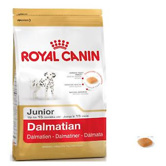 Royal Canin Dalmatian Junior (Dogs , Dog Food , Dry Food)