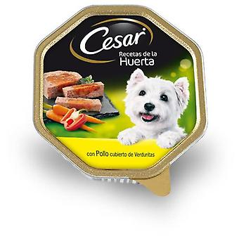 Cesar Recipe De La Huerta (Dogs , Dog Food , Wet Food)