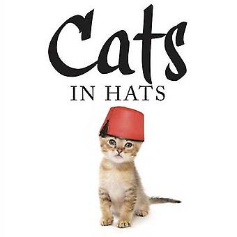 Cats in Hats - 9781782744306 Book