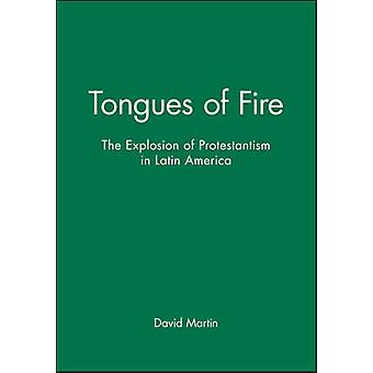 Tongues of Fire by Martin & David