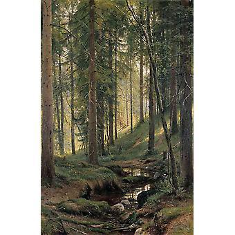 Brook i skogen, Ivan Shishkin, 40x60cm med brett
