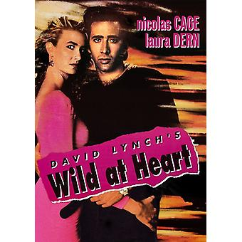 Wild at Heart (1990) [DVD] USA import